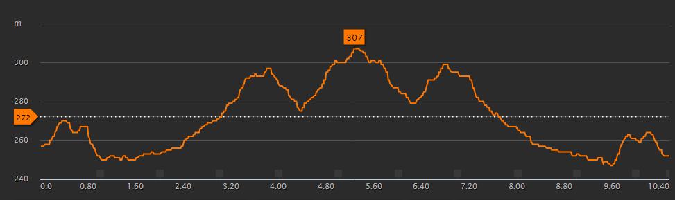 Višinski profil Maratona državnosti v Celju (1 krog)